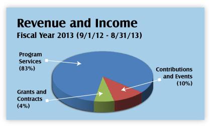 Annual Report Income Graph