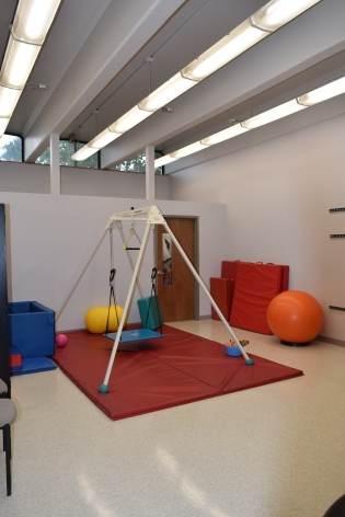 Therapeutic Swing