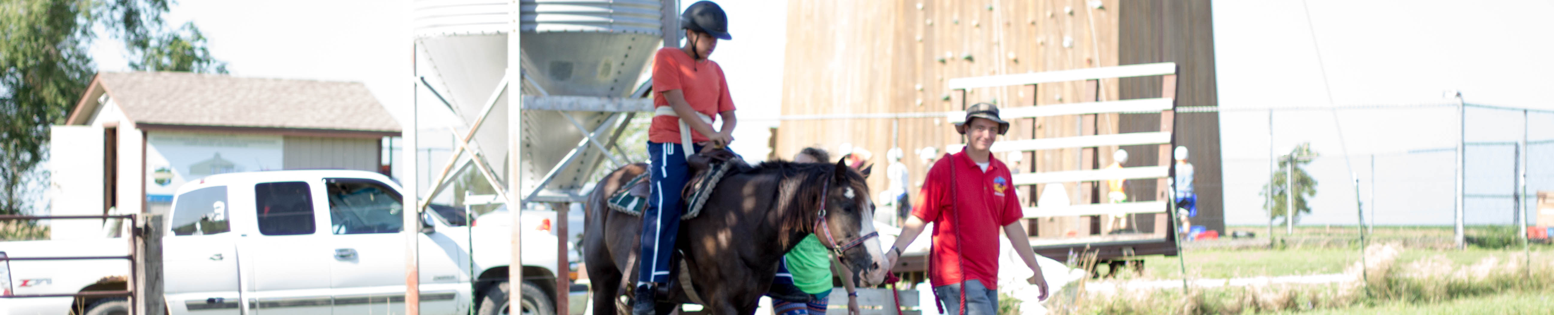 Camp Banner Image Horse from Front