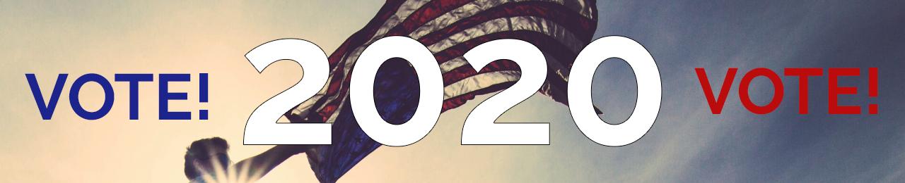 Vote Vote 2020
