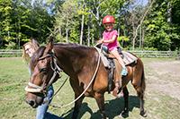 A young girl riding a horse