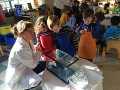 Little Scientists Program