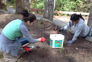 High School Students Volunteer at Camp
